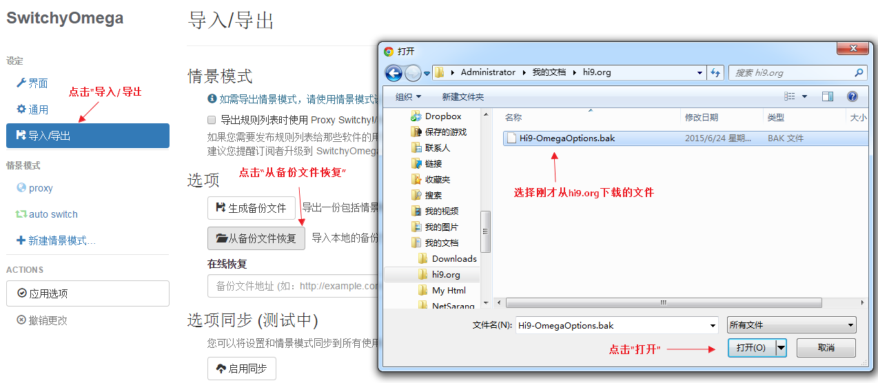 导入Proxy SwitchyOmega选项